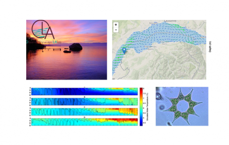 Avis de stage : Initiation à la modélisation tridimensionnelle  des systèmes lacustres