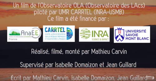 OLA, l'Observatoire des LAcs