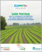 Guide STEPHY Legumes