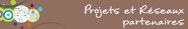 Bandeau Projets et reseaux partenaires