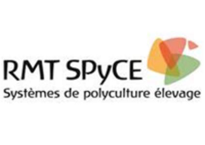 RMT SPyCE