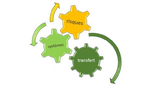 Decitrait, un exemple de transfert