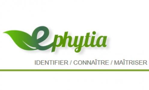 E-Phytia