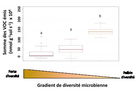 Diversité microbienne
