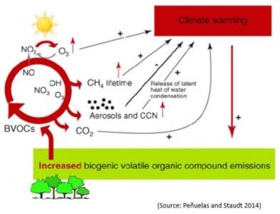 Emissions de composés organiques volatils par des sols amendés par des PRO
