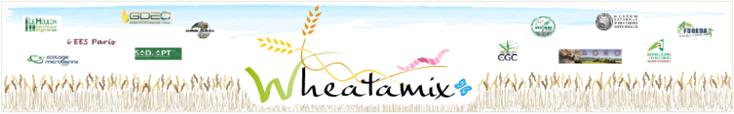 Membres Wheatamix