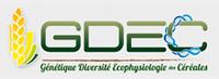 Logo de GDEC