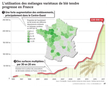 Progression of cultivar mixtures in France