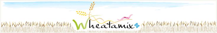 Bienvenue sur le site du projet Wheatamix