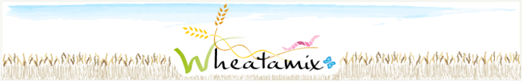 a picture of Wheatamix project